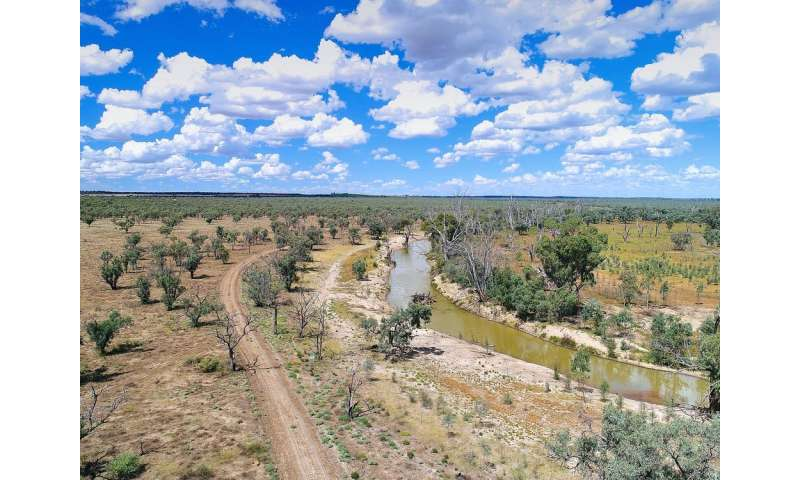 We looked at 35 years of rainfall and learned how droughts start in the Murray-Darling Basin