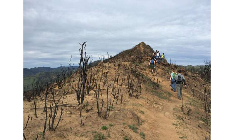 Wildfire perceptions largely positive after hiking in a burned landscape