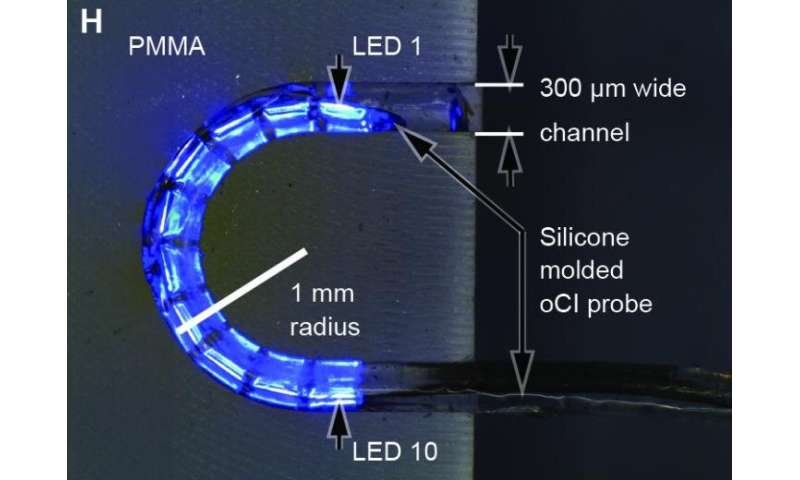 Wireless, optical cochlear implant uses LED lights to restore hearing in rodents