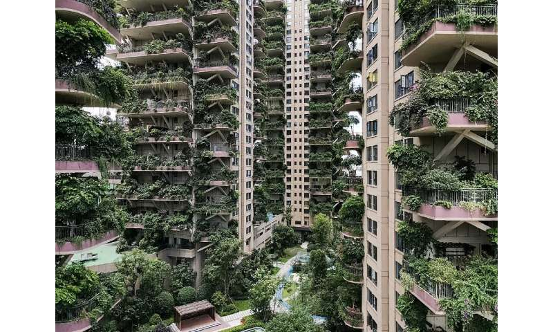 With hardly any residents to care for them, the plants at Chengdu's Qiyi City Forest Garden have overrun the towers
