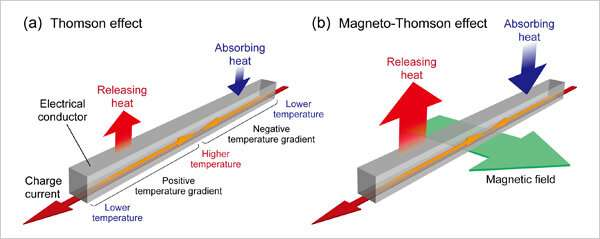 World's first direct observation of the magneto-Thomson effect