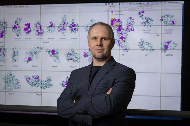 WPI researcher's paper on COVID-19 published in Viruses journal
