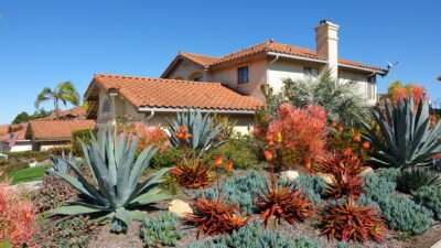 Xeriscaping saves water, adds beauty