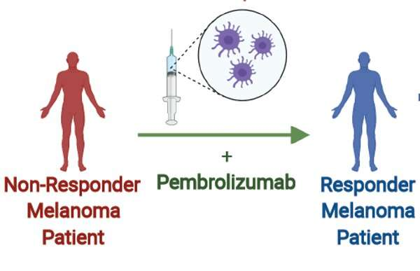 Fecal microbe transplants help cancer patients respond to immunotherapy and shrink tumors