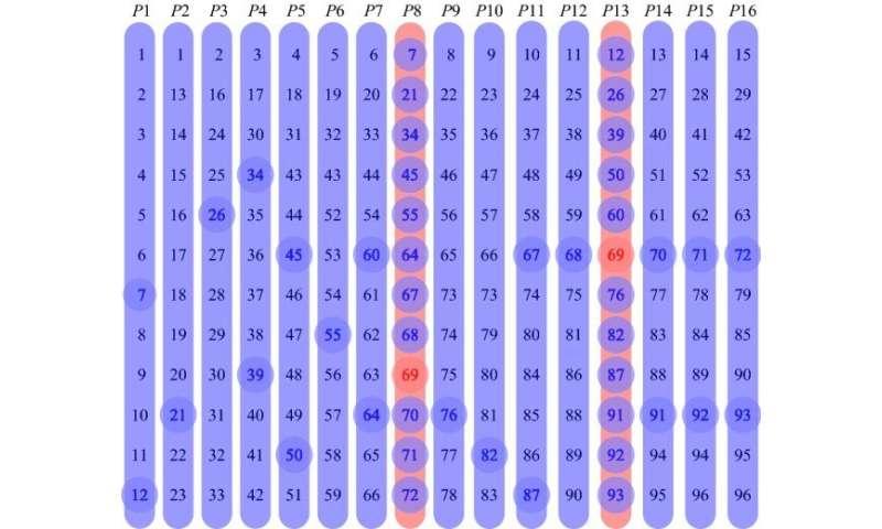 Group test method developed for COVID-19