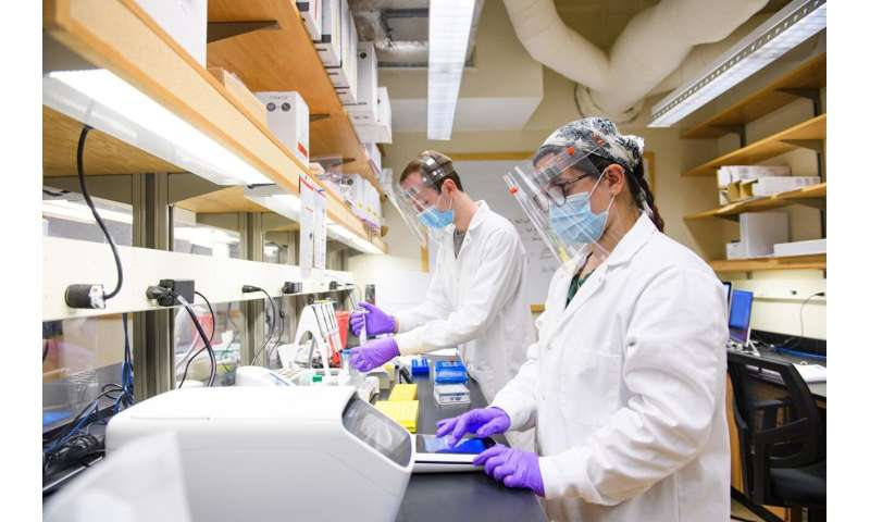 Purdue scientists use malaria expertise to track COVID-19 variants