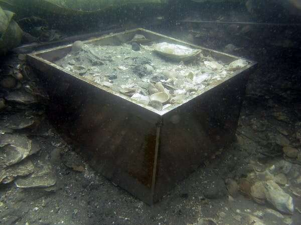 Ancient undersea middens offer clues about life before rising seas engulfed the coast. Now we have a better way to study them