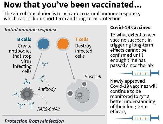 Graphic on the immune response that inoculations are designed to activate