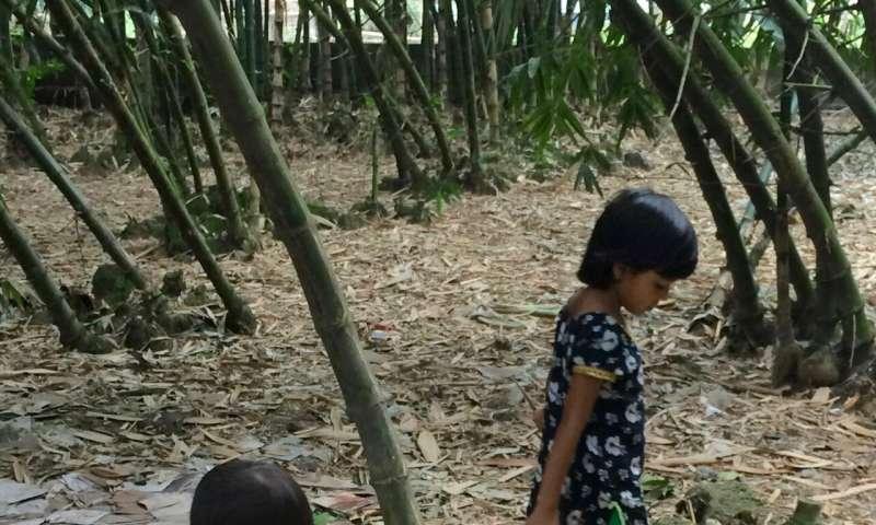 Lead poisoning of children
