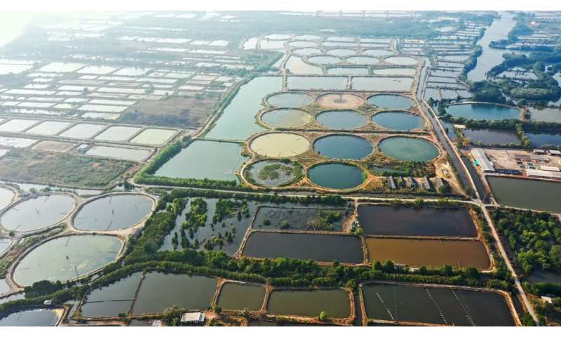 Half of global methane emissions come from aquatic ecosystems – much of this ishuman-made
