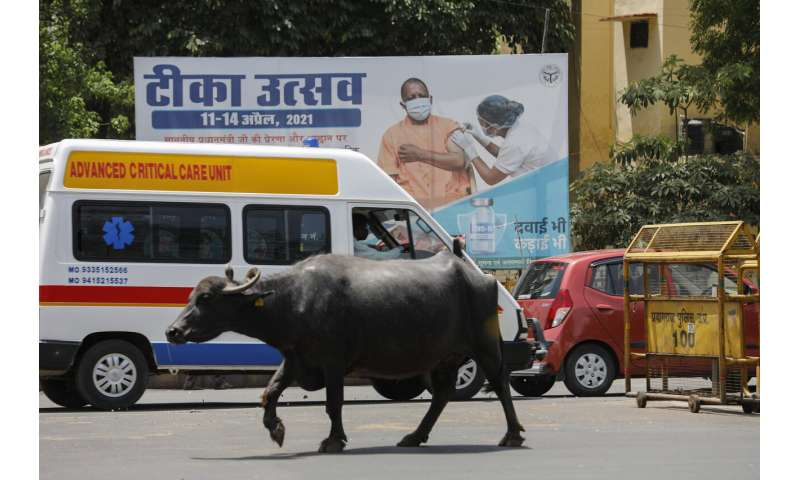 India's capital to lock down as nation's virus cases top 15M