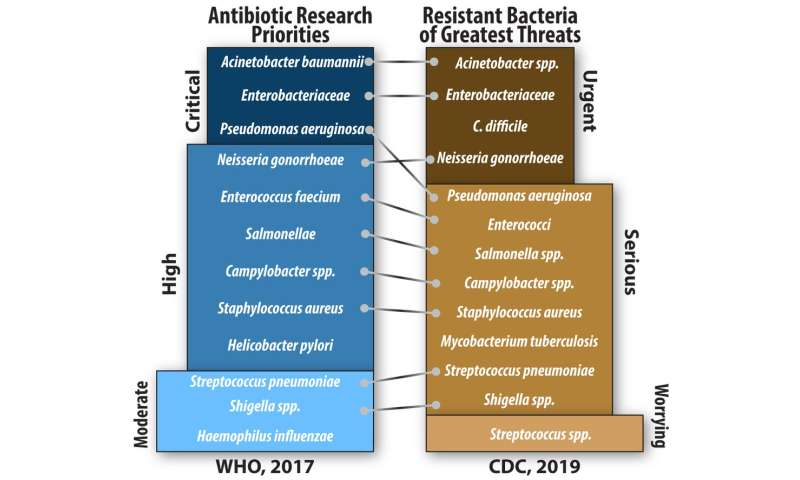 The other pandemic: Once-treatable diseases are growing resistant to antibiotics