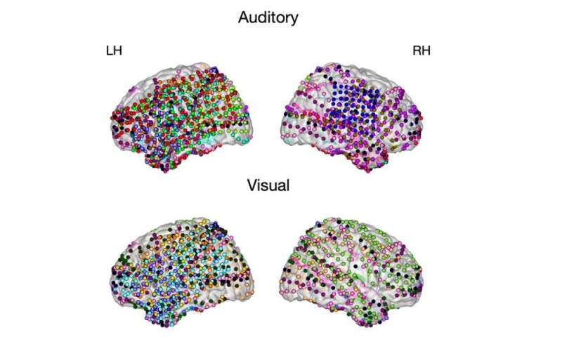 Learning hierarchical sequence representations across human cortex and hippocampus
