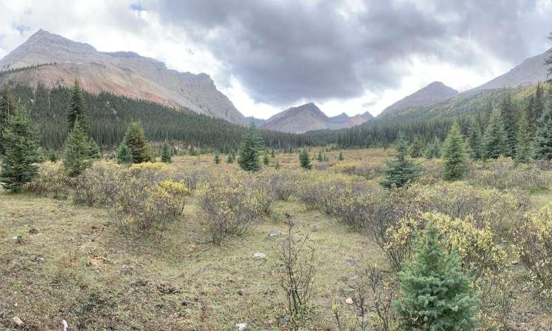 Identifying Canada's key conservation hot spots highlights problem