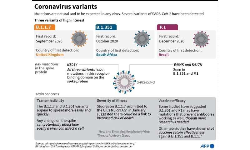 Coronavirus variants