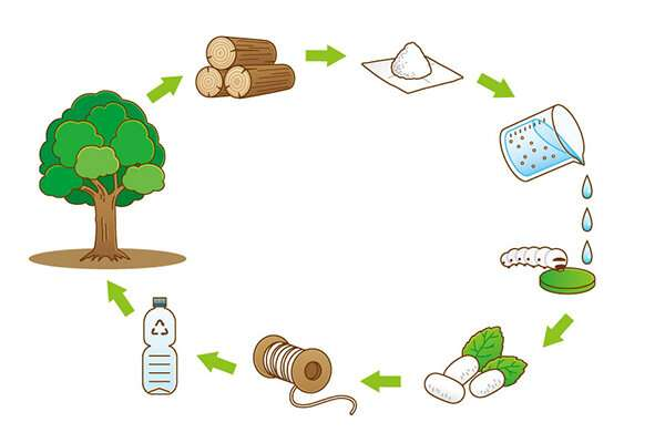 Changing the silkworm's diet to spin stronger silk