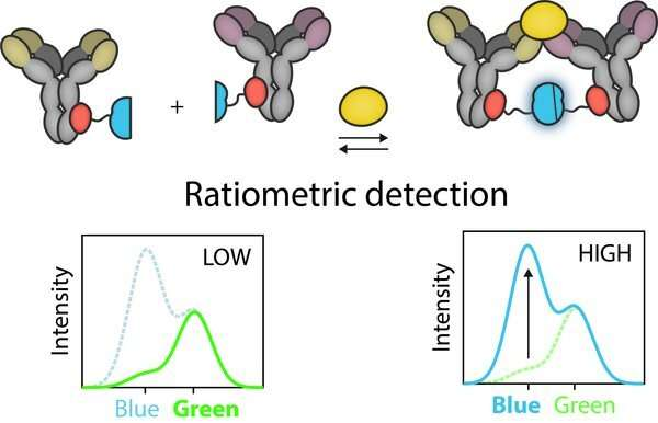 A molecular traffic light for infectious diseases