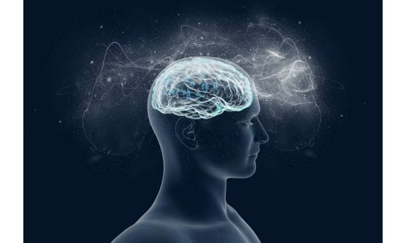 Can consciousness be explained by quantum physics? My research takes us a step closer to finding out