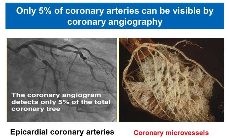 Disease of the smallest heart blood vessels is important global health problem