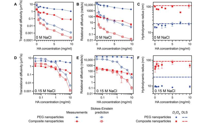 Fast nanoparticle diffusion in synovial fluid and hyaluronic acid solutions