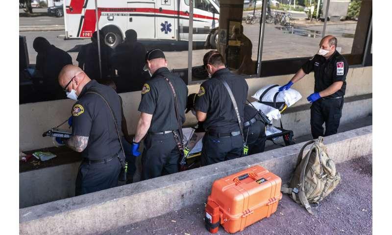 Hundreds believed dead in heat wave despite efforts to help