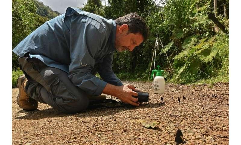 Juan Guillermo Jaramillo says he has taken photographs of 1,500 different species of butterflies, almost half the number of vari
