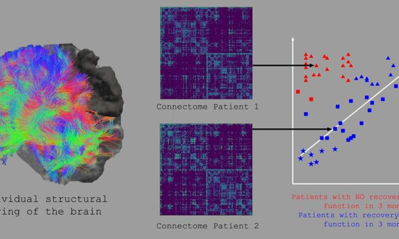 Machine-learning improves the prediction of stroke recovery