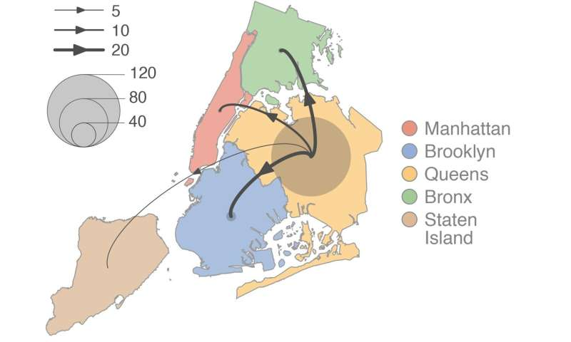 New research maps COVID-19 dispersal dynamics in New York's first wave of epidemic