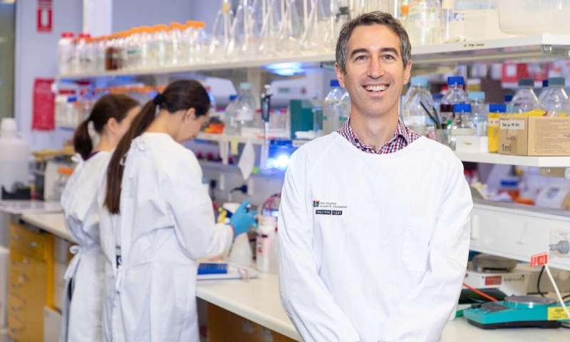 New clues to prostate cancer: Why aggressive subtype can resist treatment thumbnail