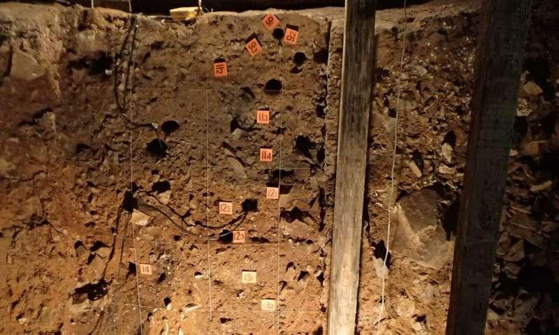 Pleistocene sediment DNA from Denisova Cave