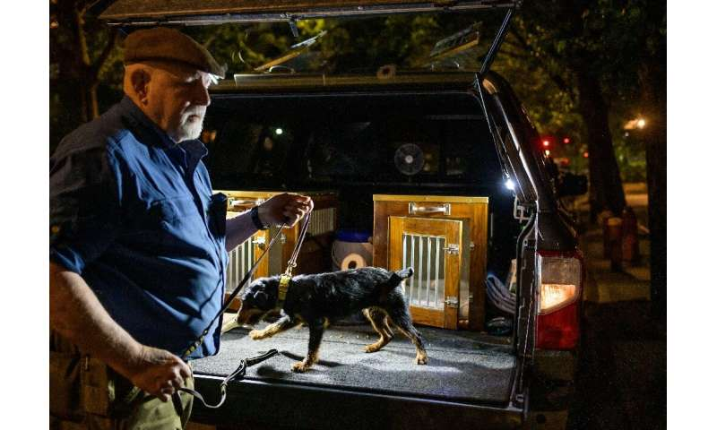 Richard Reynolds of the Ryder's Alley Trencher-fed Society (R.A.T.S.) takes his dog out of a crate in lower Manhattan on May 14,