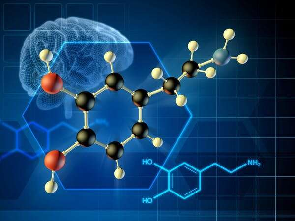 Role of dopamine in consciousness