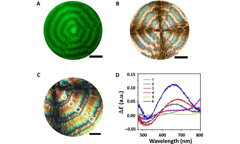 Self-organization of nanoparticles and molecules in periodic Liesegang-type structures