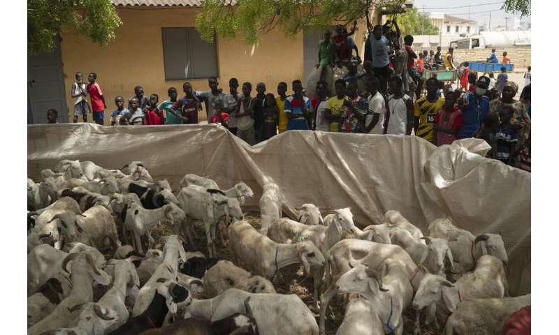 Senegal sees dramatic COVID-19 surge as major holiday looms