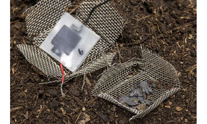 The biodegradable battery