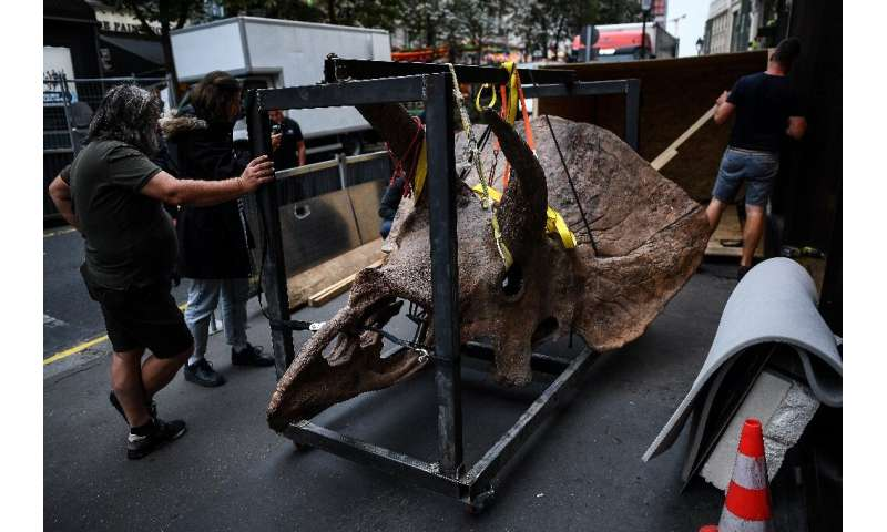"""The sale of """"Big John"""" comes amid continued enthusiasm for dinosaur skeletons, with prices often reaching records"""