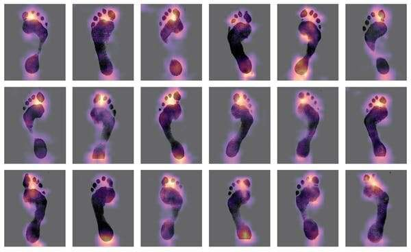 We trained AI to recognise footprints, but it won't replace forensic expertsyet