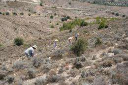 Archaeologists find early Neolithic evidence
