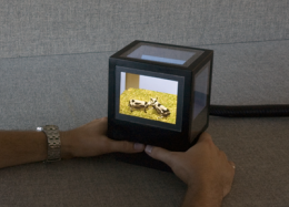 3D without the glasses: introducing pCubee