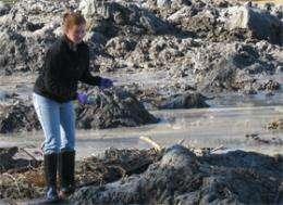 Scientists look deeper for coal ash hazards