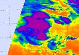 NASA infrared satellite data gives System 96S a fair shot at becoming a tropical cyclone