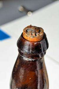 Scientists to study one of world's oldest beers