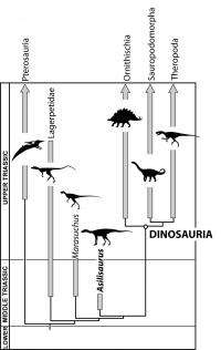 Dinosaurs might be older than previously thought