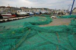 According to the report 29 pct of  handouts went to measures which contributed to overfishing