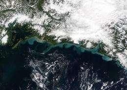 Alaska's southern coast in 2003