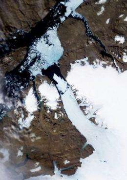 A satellite image of the Petermann Glacier taken by the Moderate Resolution Imaging Spectroradiometer on August 5