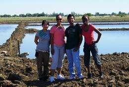 Battling rice blast disease with underground microbes