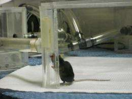 'Biosensors' on 4 feet detect animals infected with bird flu