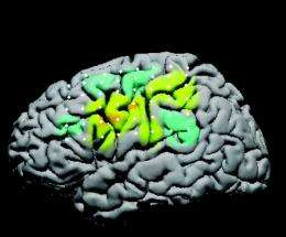 Brain-controlled cursor doubles as a neural workout