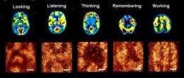 Brain-like computing on an organic molecular layer